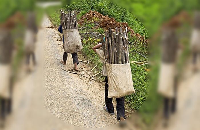 trabalho escravo respeitar