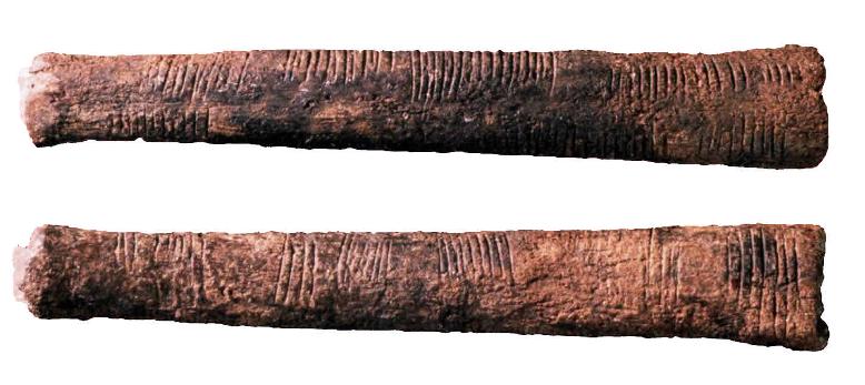 O osso de Ishango, encontrado na atual região do Congo, possui três faces, com riscos em cada uma delas, representando sequências numéricas.